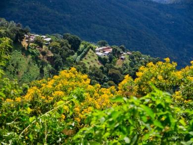 View near Antigua, Guatemala