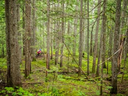 Mount Macpherson mountain biking