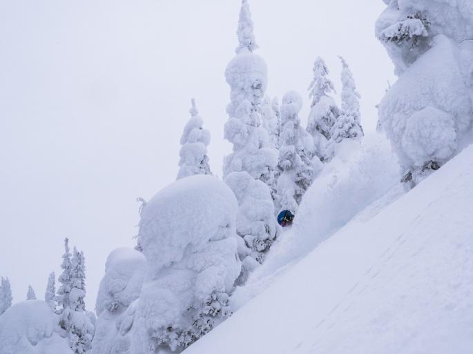Skiing McGill Shoulder