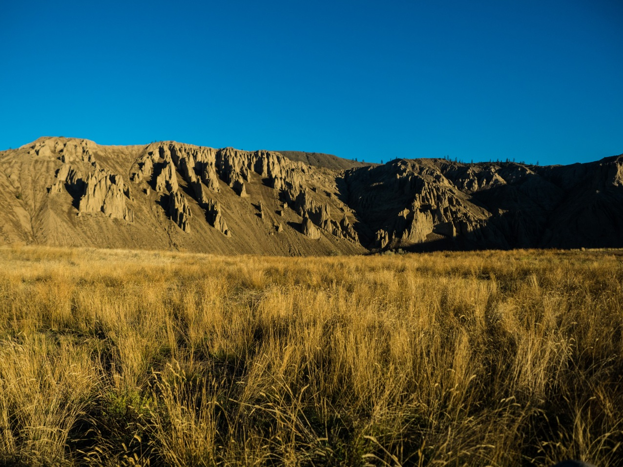 The hoodoos of Farwell Canyon in the early morning light.